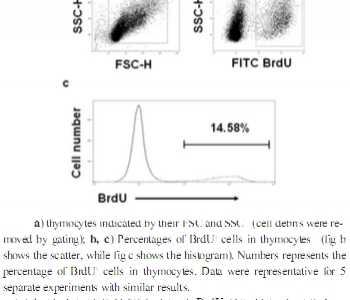 流式检测细胞表面抗原 流式细胞术同时检测BrdU与细胞表面抗原方法的改进