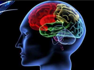 大脑开发100%就成神了 人类大脑开发100%会怎么样